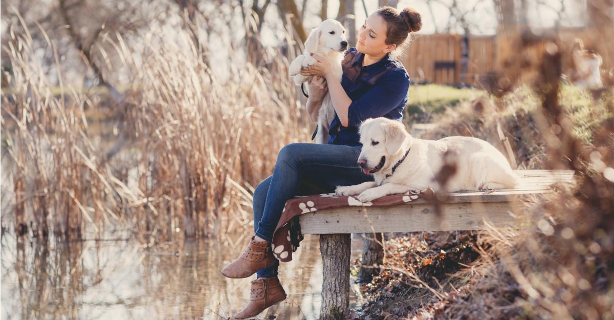 Cele mai emoționante citate despre câini, care o să îți bucure inima