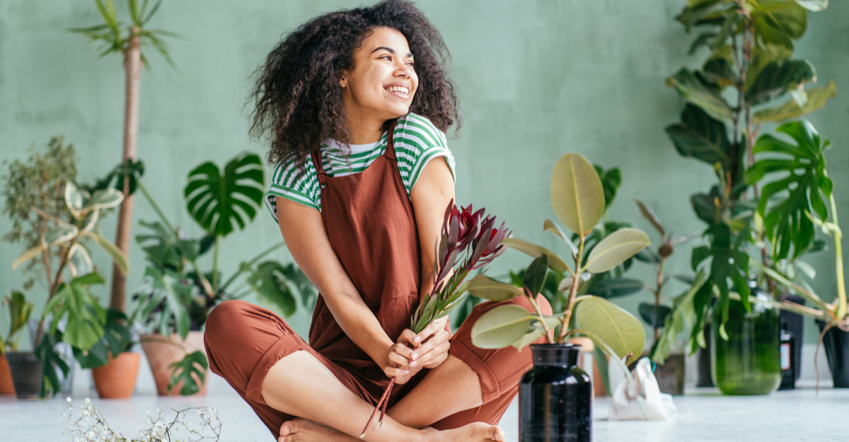 Natura este mai aproape de tine cu ajutorul unor plante de apartament!