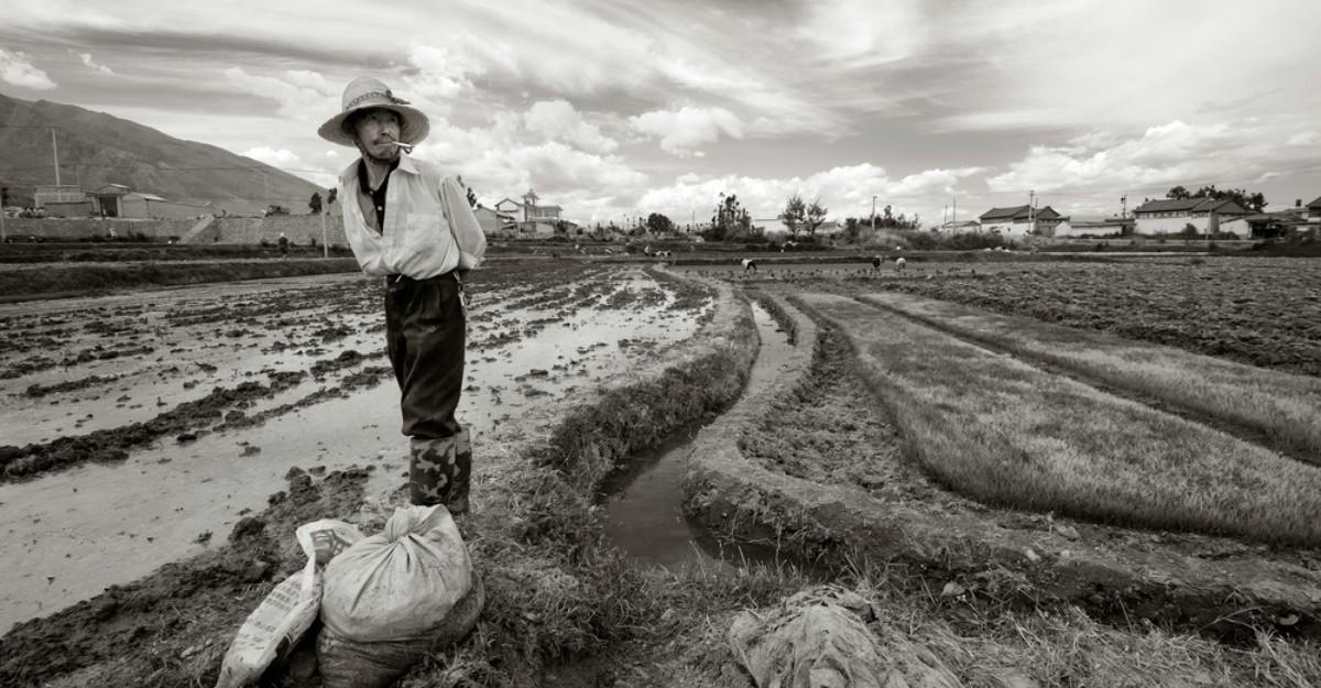 Alan Watts despre noroc și ghinion: Pilda fermierului chinez
