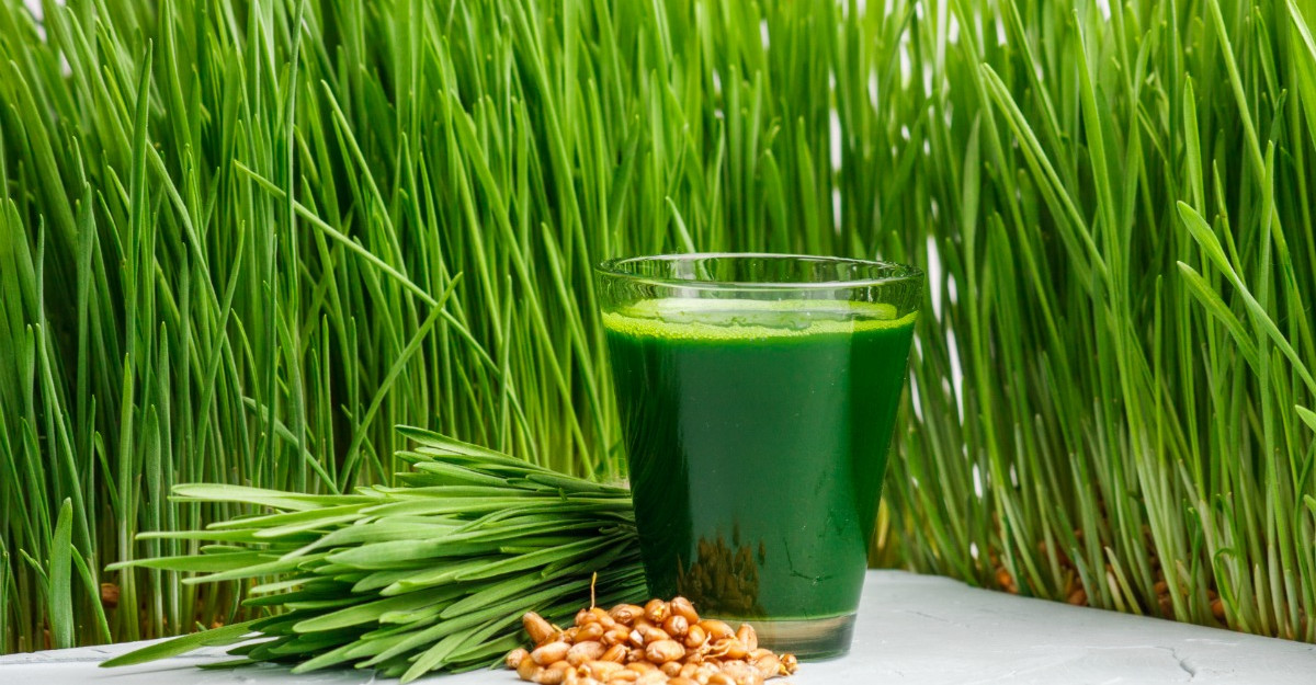 Sucul din grau verde: beneficii pentru sanatate