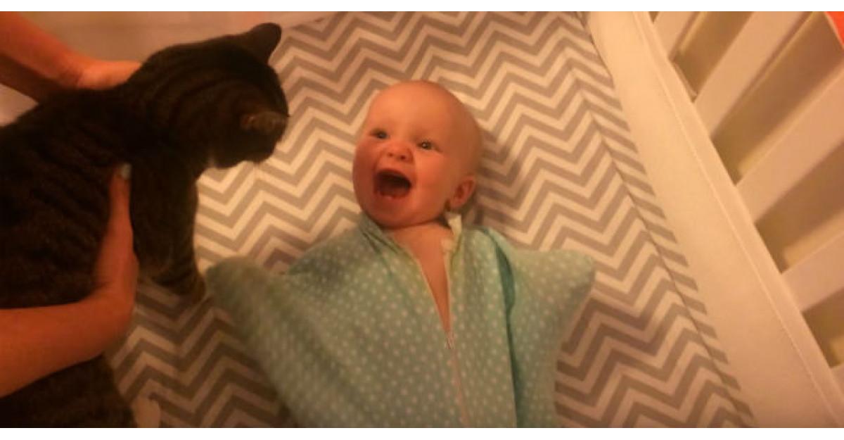 Video: Acest bebelus vede pentru prima data pisica familiei. Reactia lui? MINUNAT