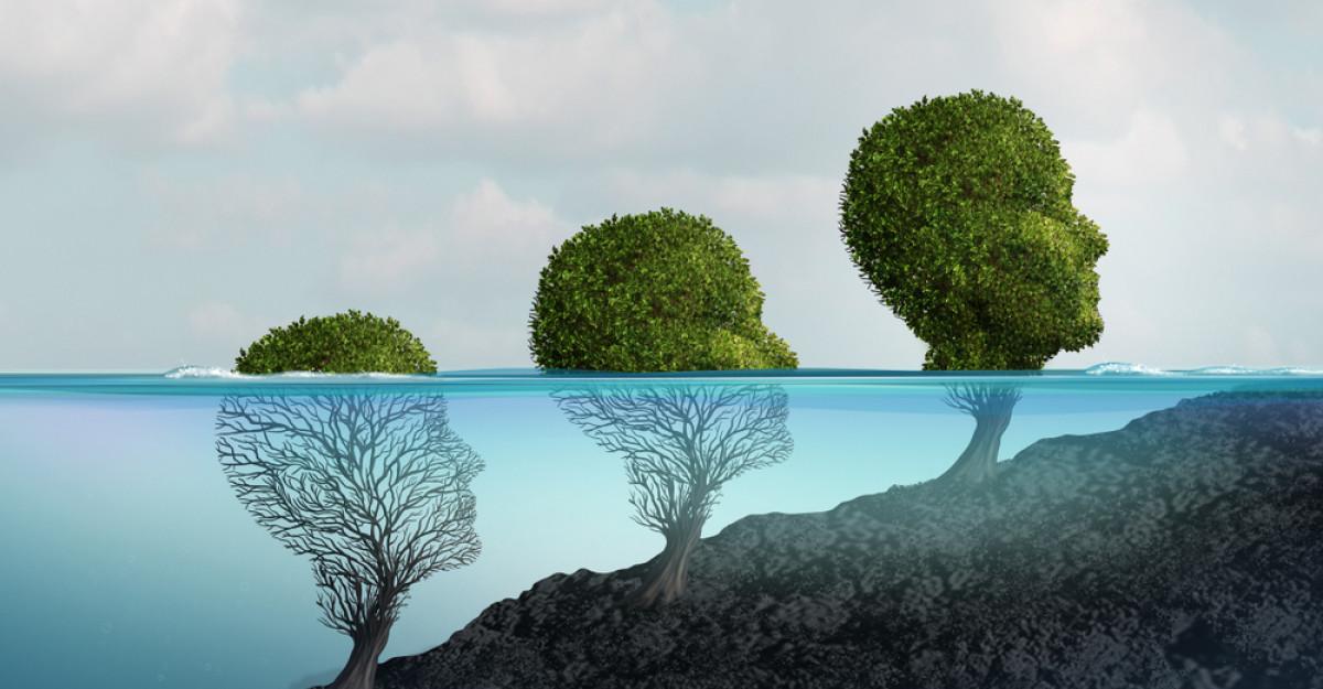 Cele patru zone ale dezvoltării personale