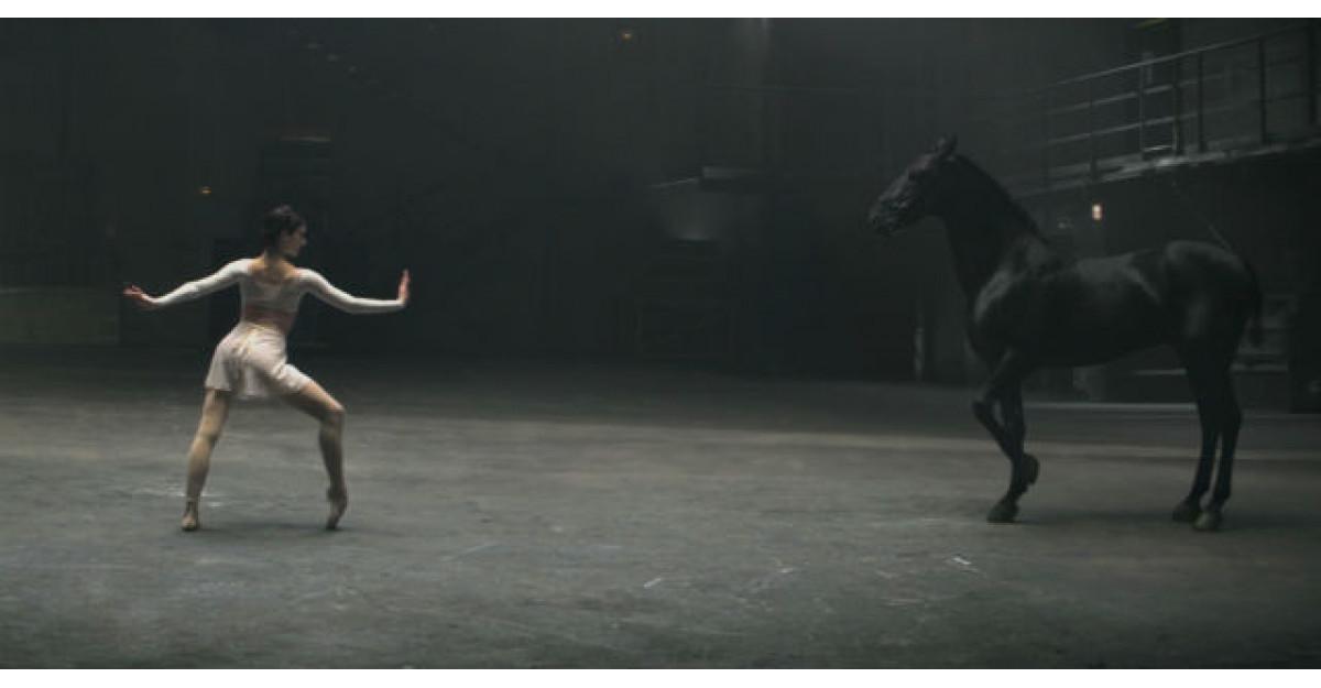 Video: O balerina incepe sa danseze, apoi calul face ASTA. Am ramas fara cuvinte