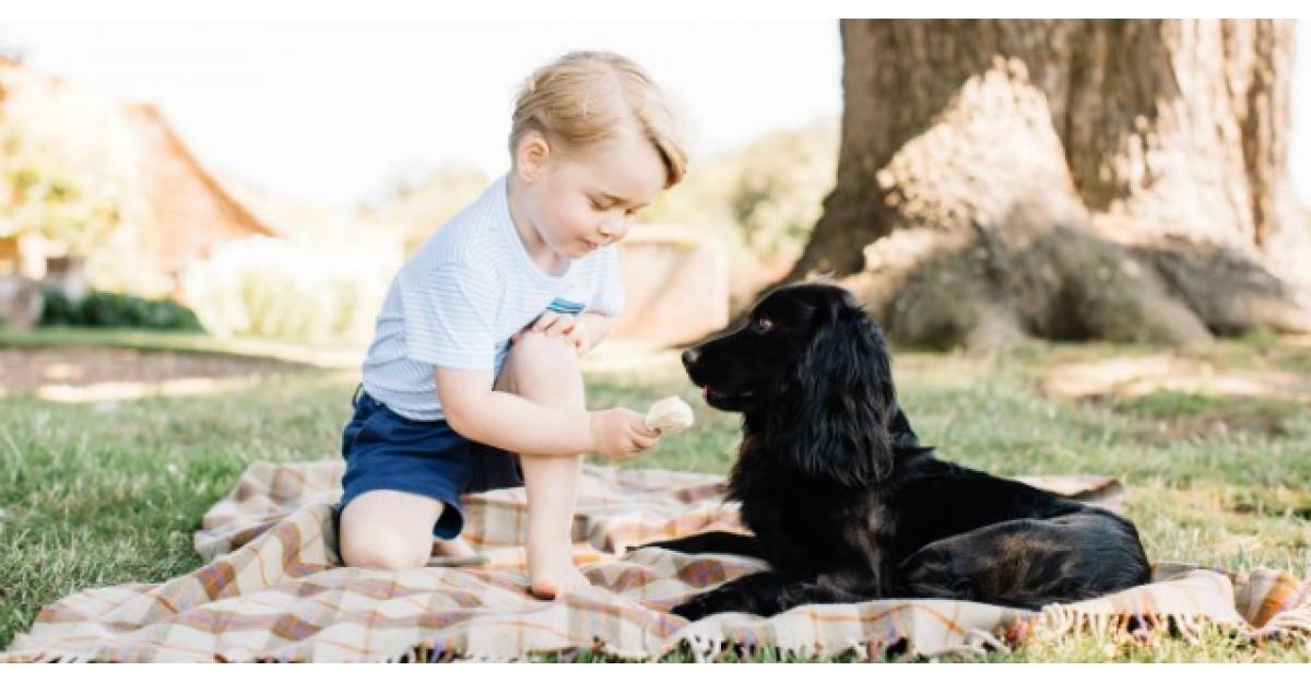 Cele mai frumoase fotografii cu Printul George la trei anisori