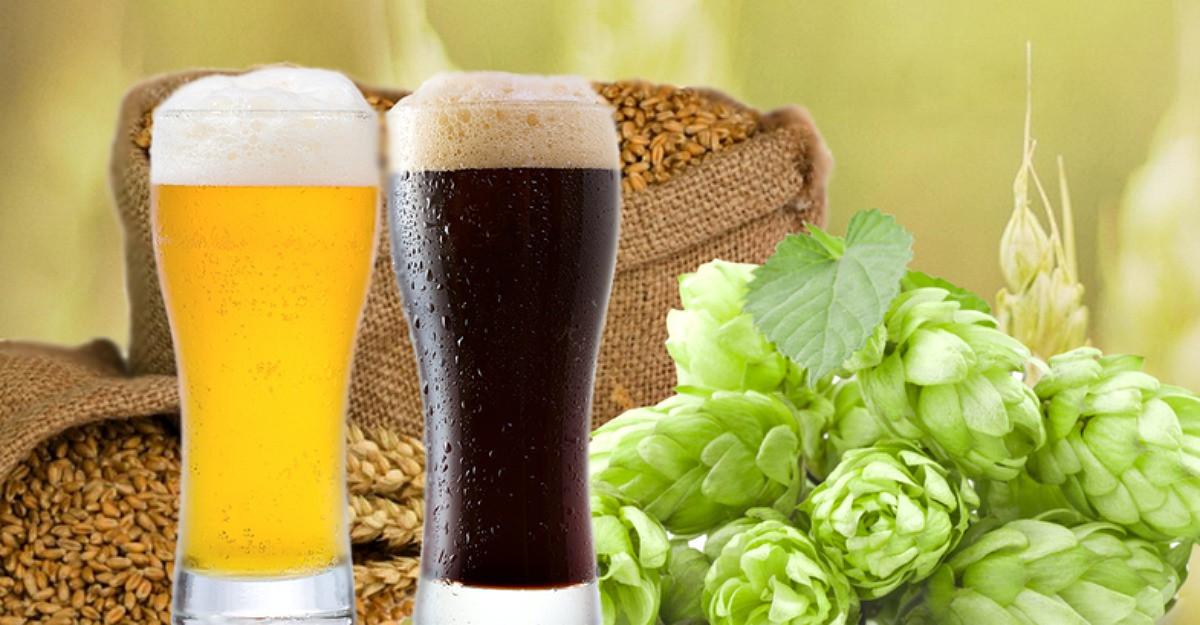 Avocado, cerealele si berea: surse de fibre esentiale pentru sistemul digestiv
