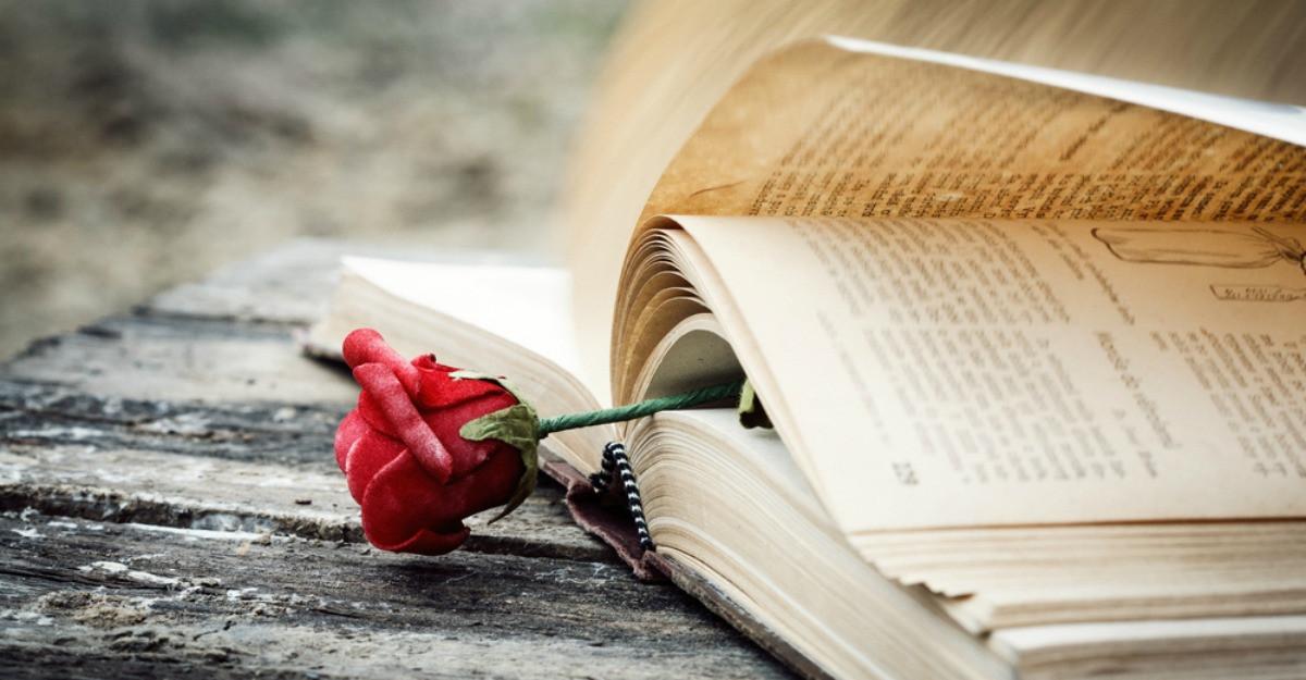 'Dincolo de iarnă' de Isabel Allende - o poveste despre solidaritate, iertare și puterea vindecătoare a dragostei