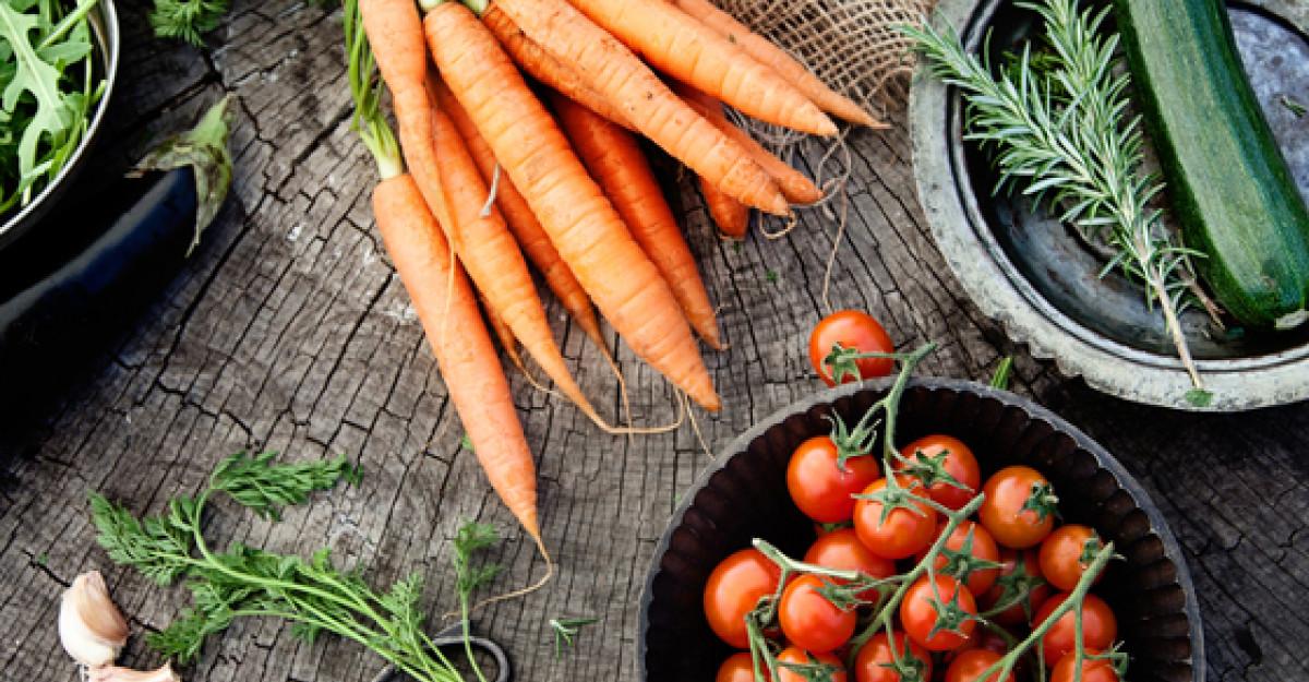 Bazele naturale ale alimentatiei
