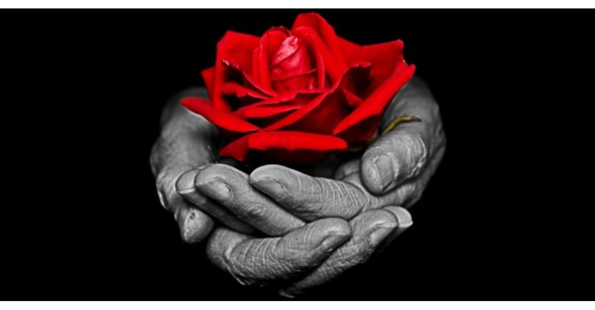 Ce inseamna sa iubesti din toata inima?