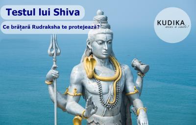Testul lui Shiva: Ce bratara Rudraksha te protejeaza?