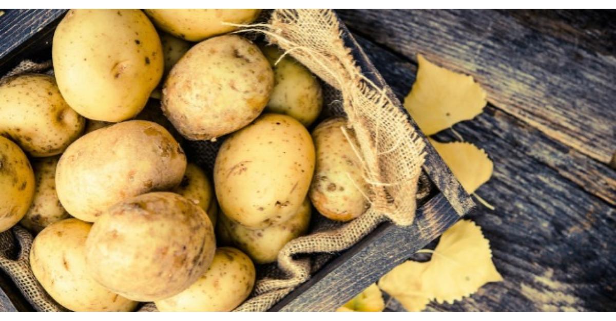Tot ce trebuie sa stii despre dieta cu cartofi
