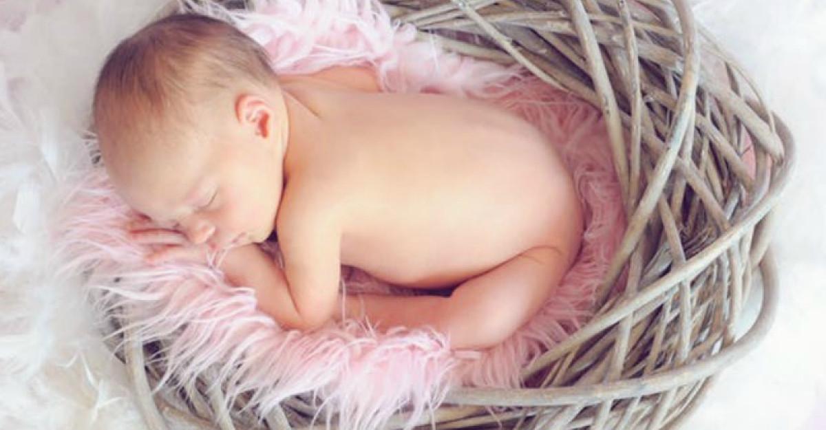Embrionul uman, acest miracol al evoluției