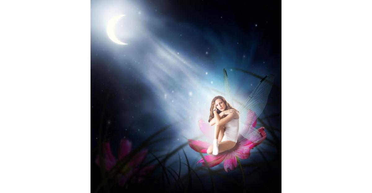 Astrologie naturist-emotionala: Semnul Lunii si cei 12 VINDECATORI Florali
