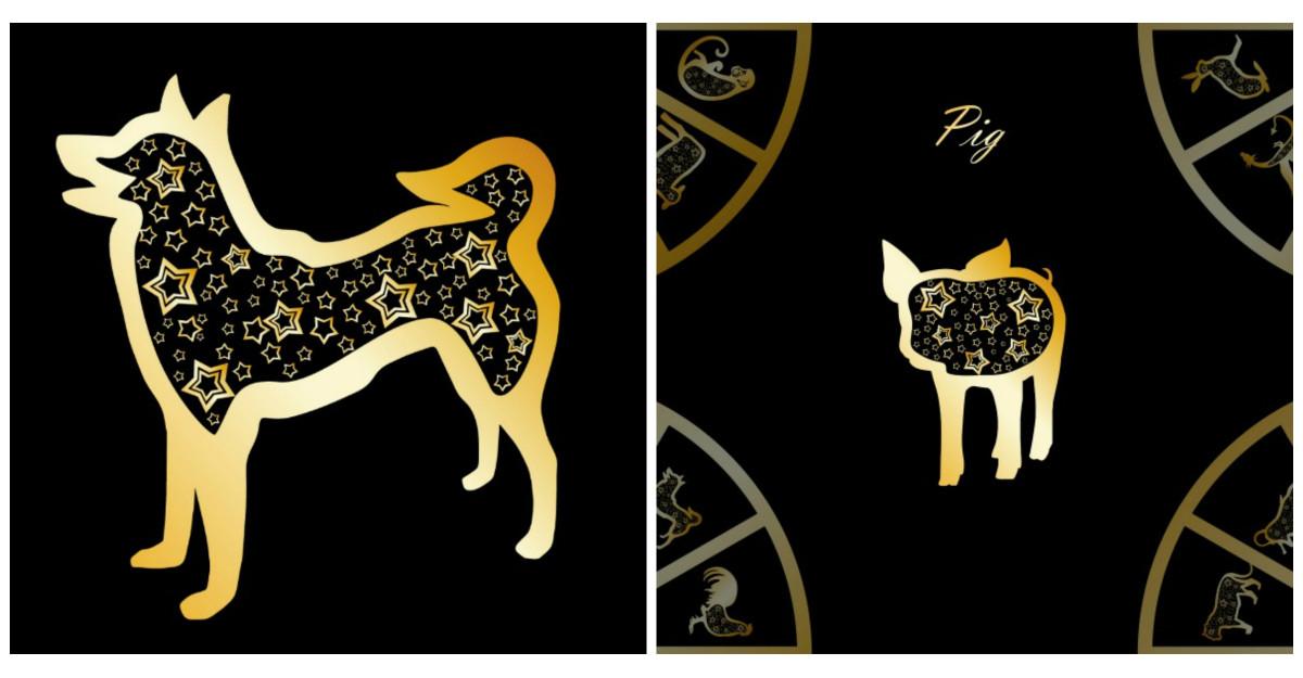 Horoscop chinezesc pentru Caine si Mistret in 2020