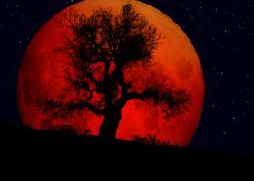Astrologie: Pe 27 iulie Luna Sangerie ne rascoleste sufletele