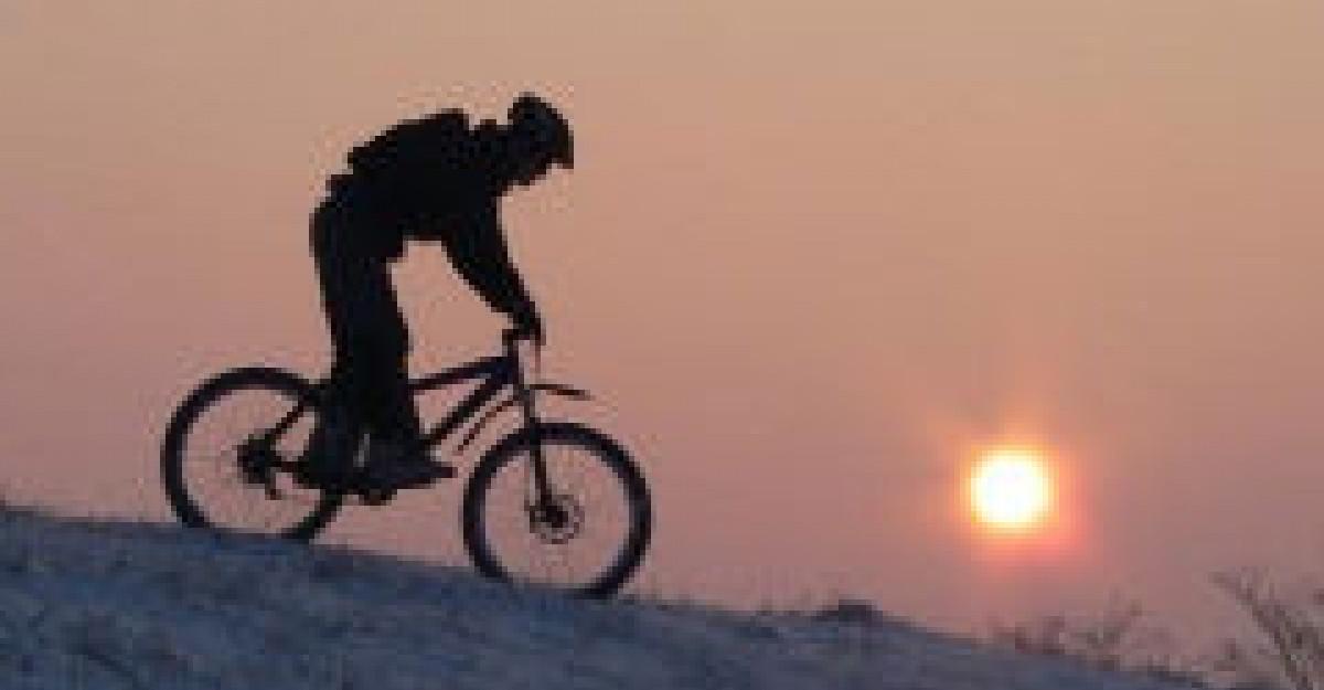 Un tur de forta pe biciclete