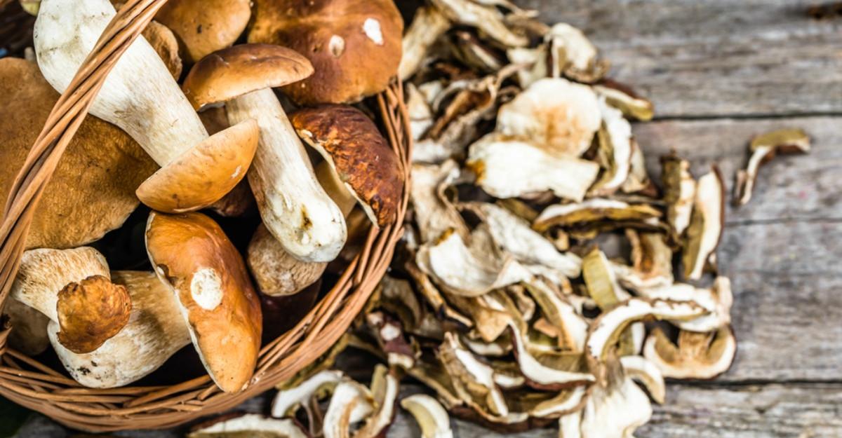 Beneficiile ciupercilor: inlocuiesc carnea, intaresc imunitatea si combat oboseala