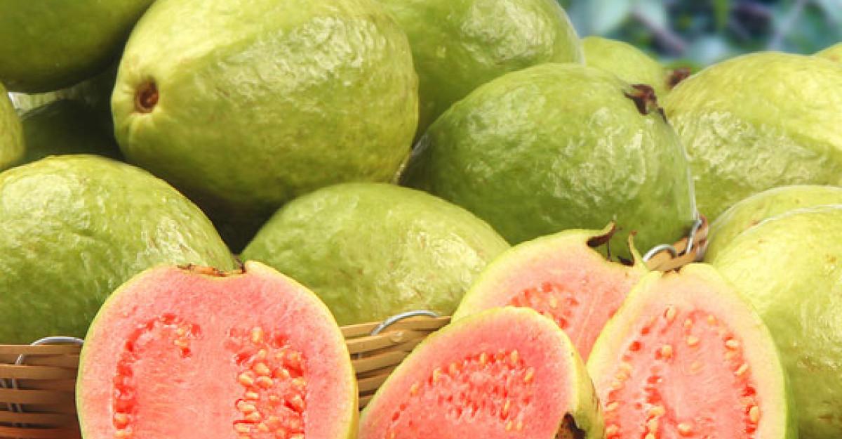guava pleacă pentru pierderea rapidă în greutate pierdere în greutate de iarbă de jeleu
