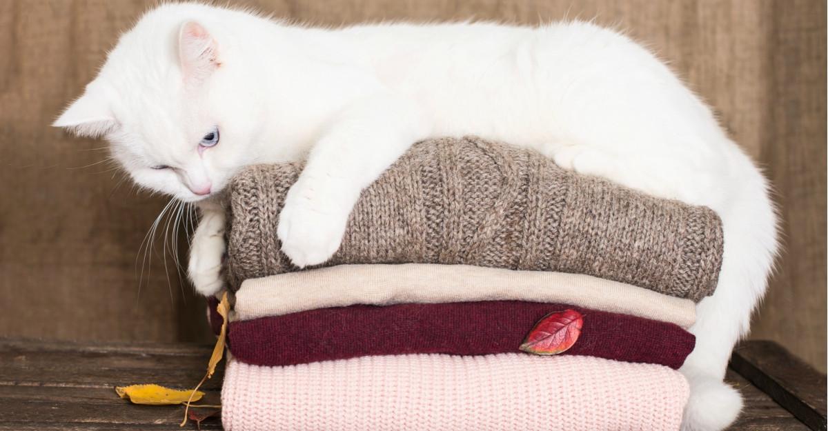 Cardigane si pulovere tricotate pentru zile friguroase