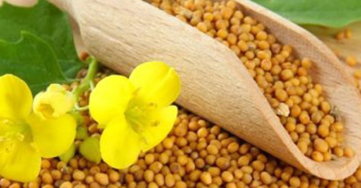 SEMINTELE DE MUSTAR: Fabuloase pentru sanatate! Au efect antiinflamatoriu, previn cancerul si ajuta in slabire