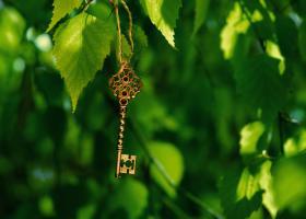 Cele patru chei pentru o viata echilibrata