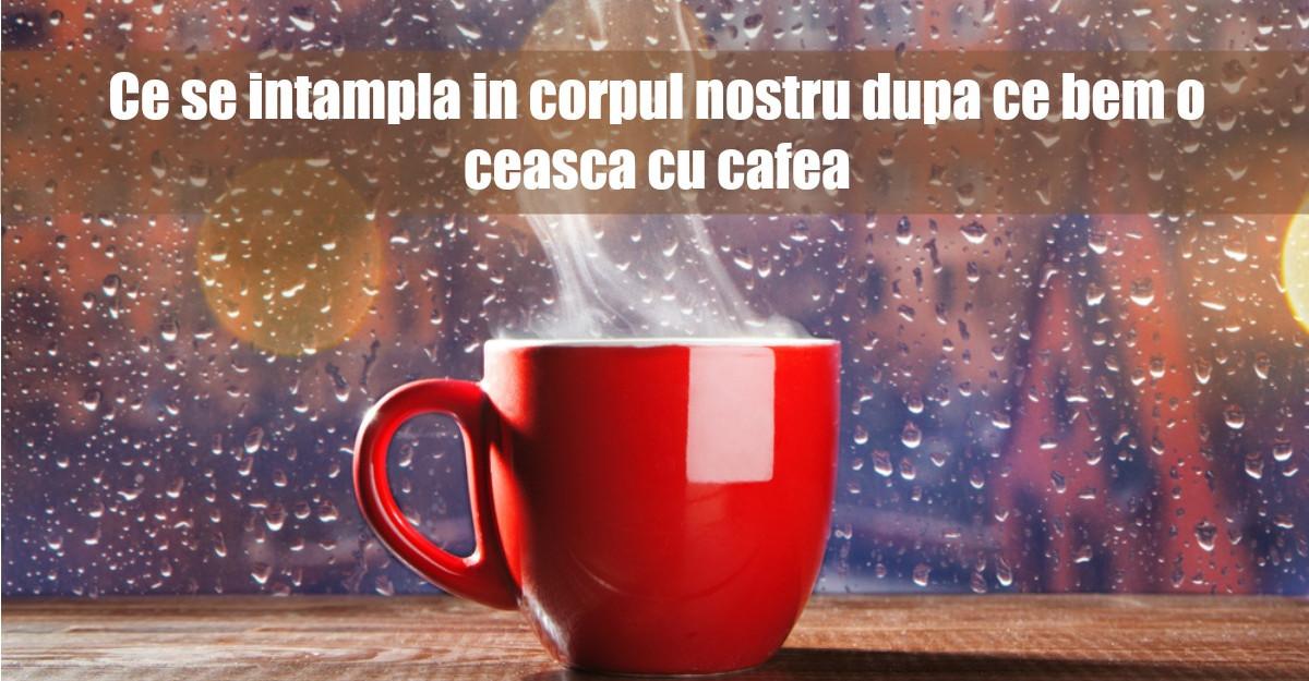 Ce se intampla in corpul tau dupa ce bei o ceasca de cafea?
