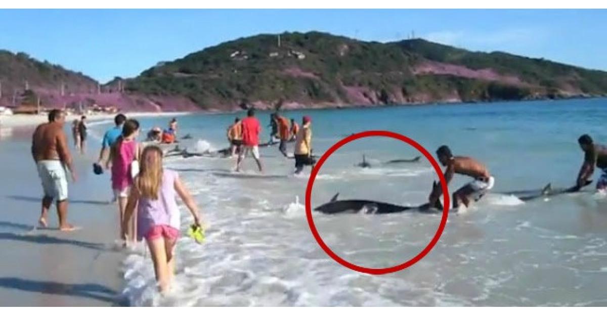 Video: Un turist filma plaja cand ASTA s-a intamplat. Ce au facut oamenii este INCREDIBIL