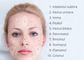 Cele 11 zone reflexogene de la nivelul fetei