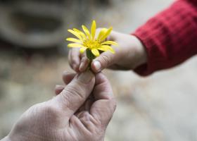 28 de citate despre bunatate