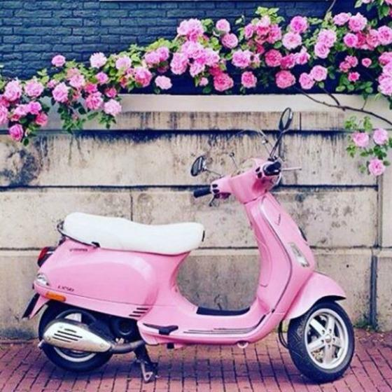 La vie en rose: poartă roz în fiecare zi!