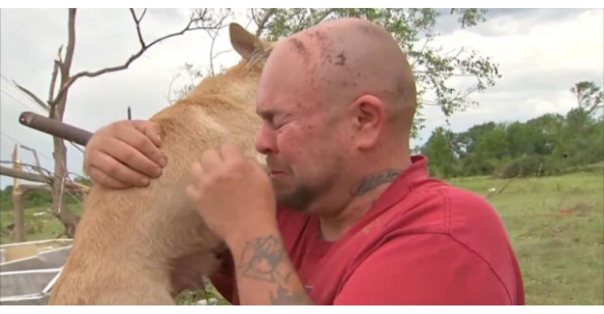 Video: Si-a pierdut cainele intr-o tornada. Cand s-a intors acasa a avut parte de surpriza vietii lui