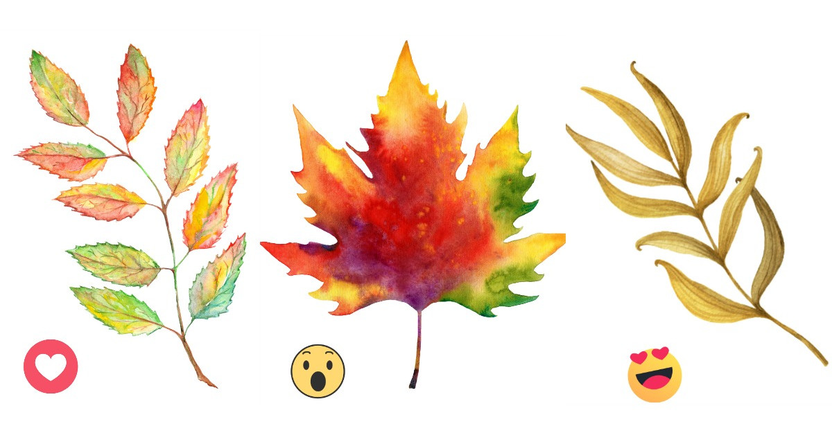 Alege frunza de toamna care te atrage cel mai mult si afla cum vor fi ultimele doua luni ale anului pentru tine
