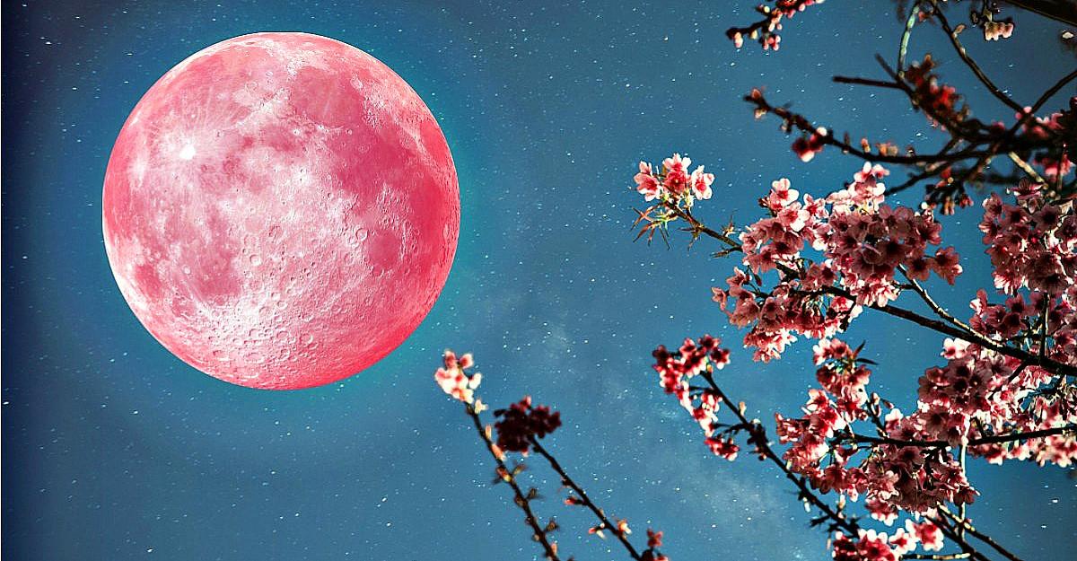 Cele trei zodii favorizate de Super Luna Roz, prima lună plină a primăverii