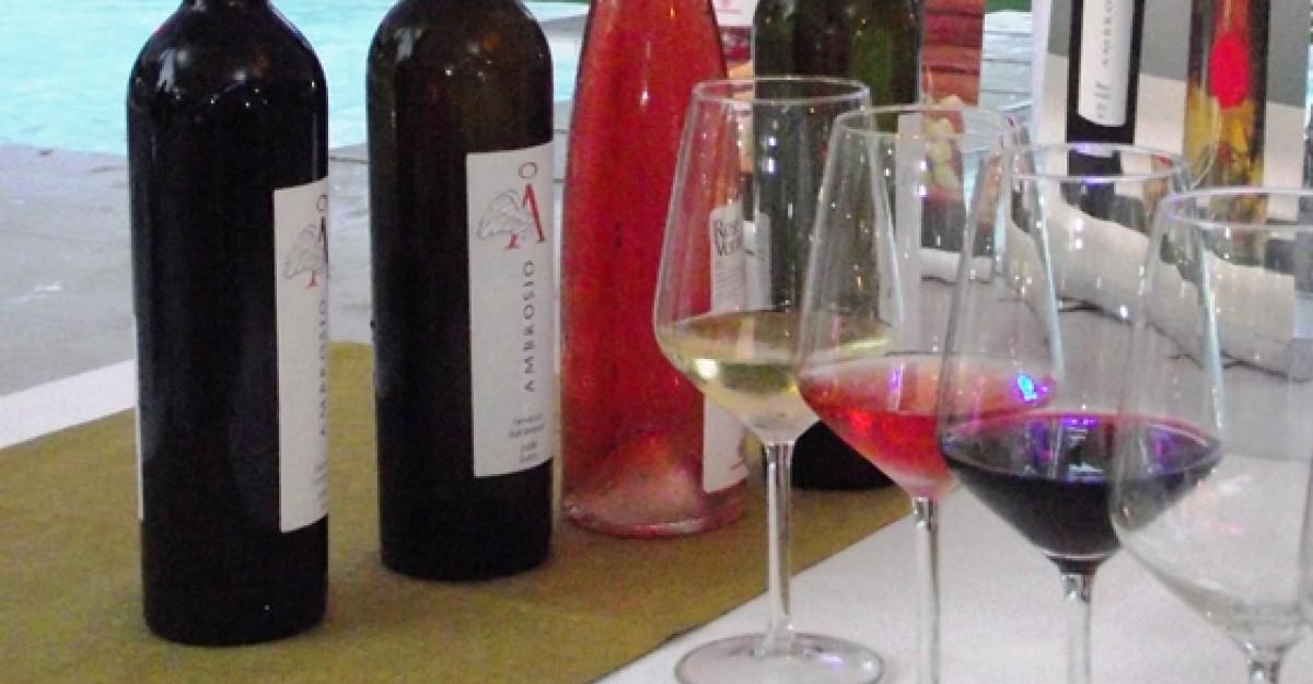 Carte si vin, eveniment Ambrosio by Vincon Romania