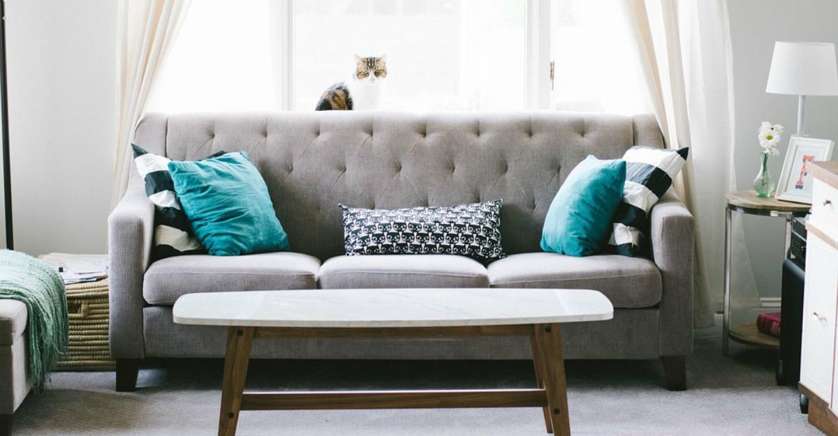 Alegerea canapelei - 5 detalii care fac diferența