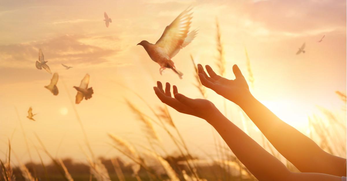 Citate despre iertare: Numai cei curajoși știu să ierte