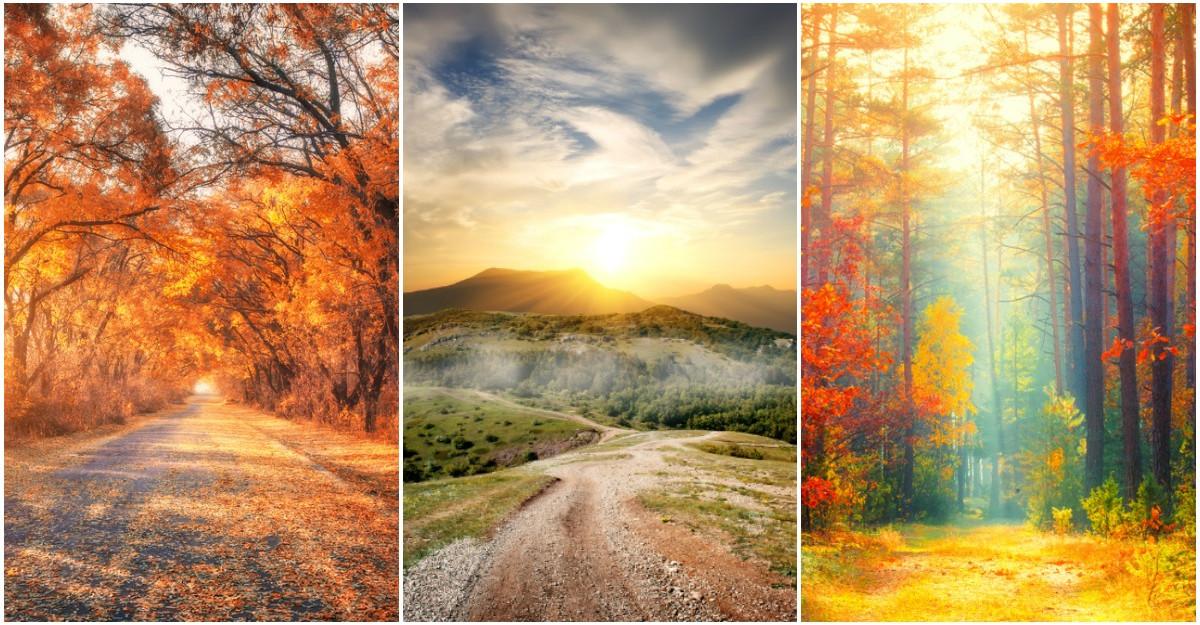 Alege un drum de toamna si afla ce ti-a pregatit Universul pentru urmatoarele luni