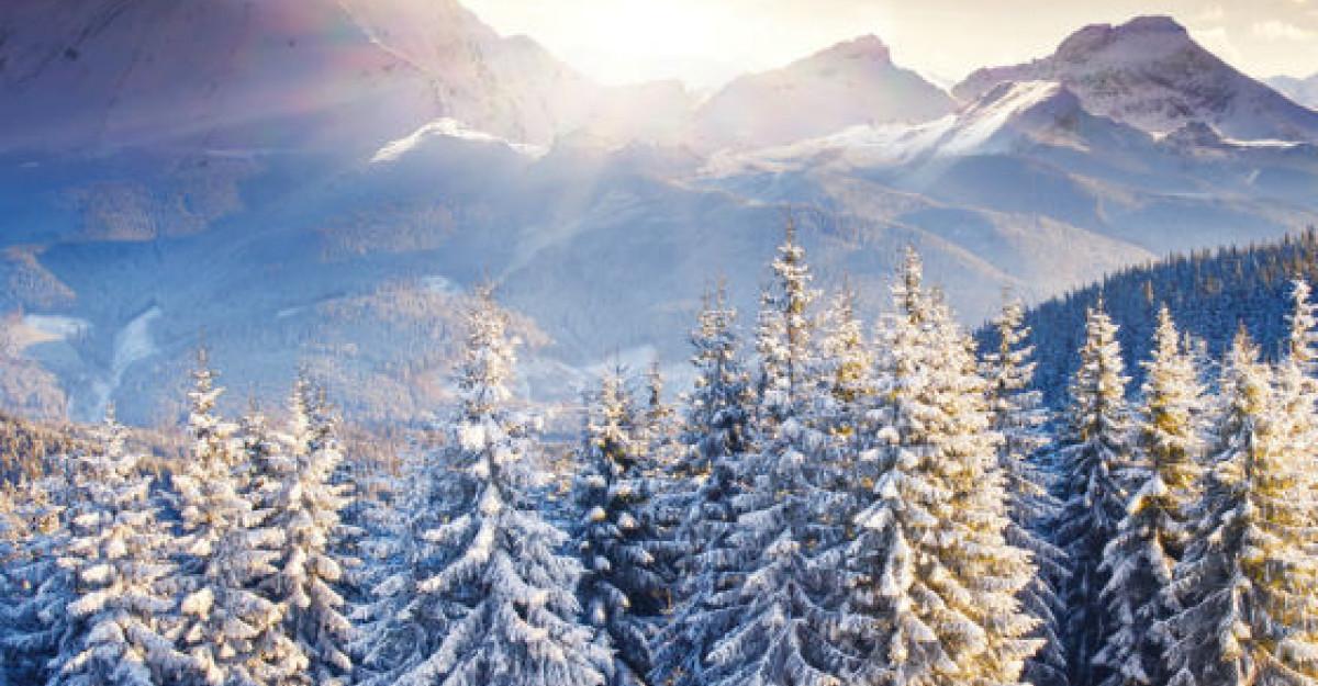 O colectie deosebita de citate despre iarna