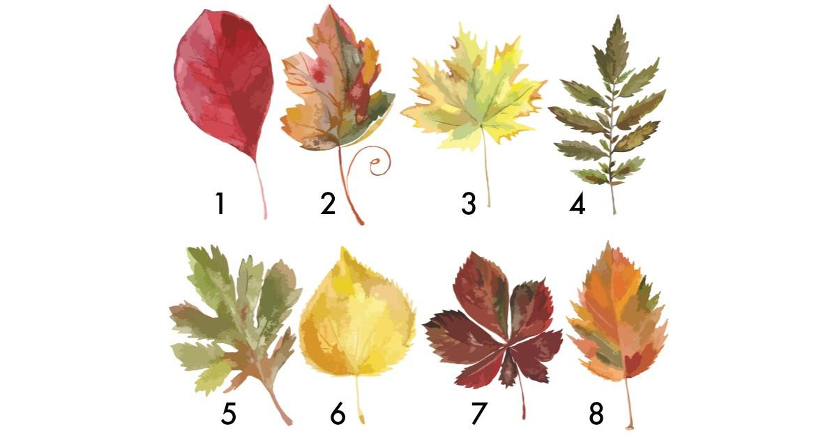 Alege o frunză și află ce îți rezervă finalul de an 2018