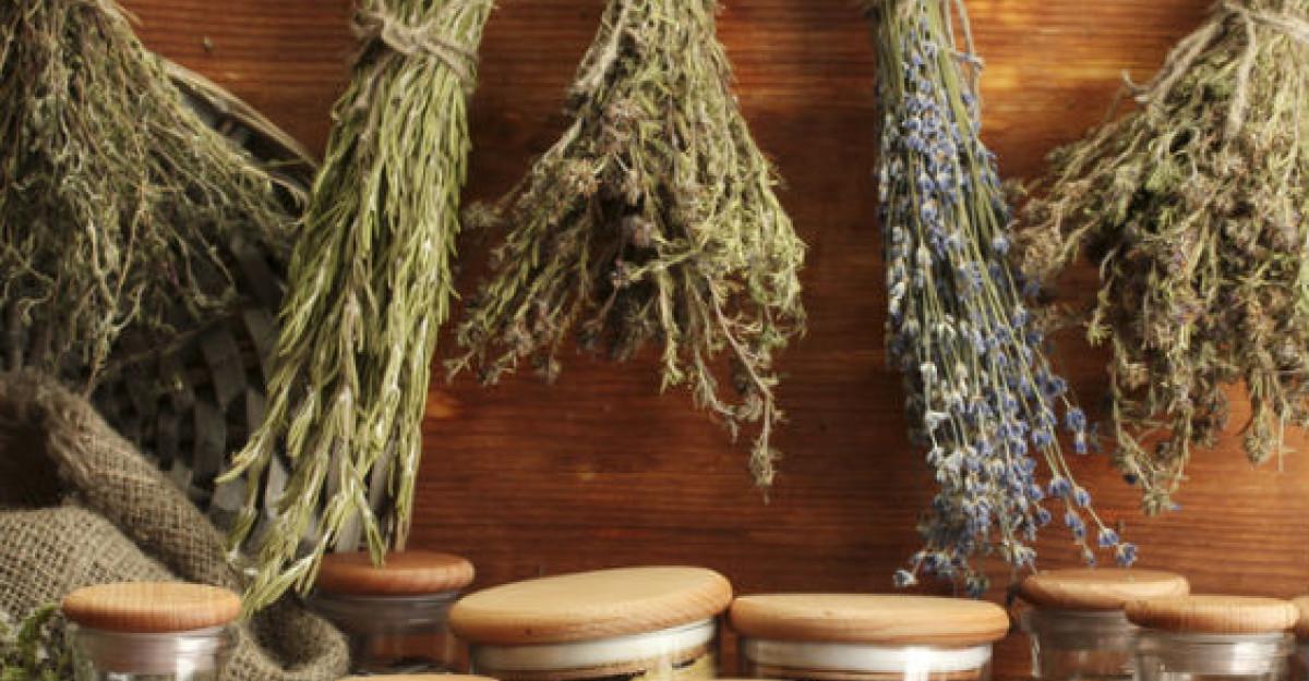Ghidul plantelor medicinale si aromatice de la A la Z