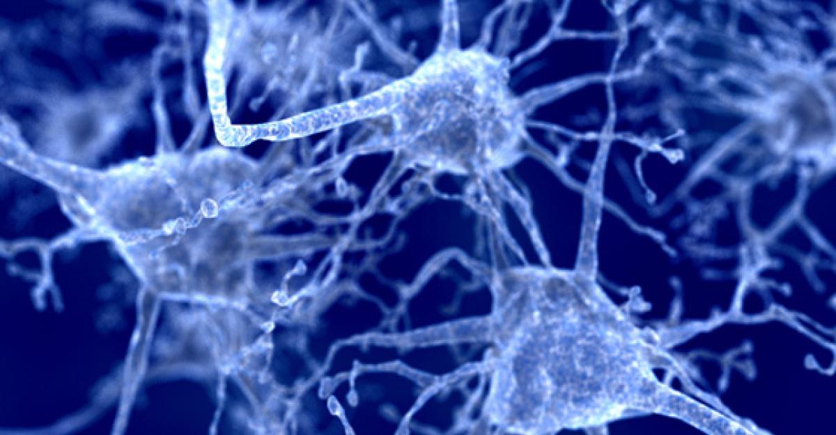 Numarul bolnavilor de Parkinson pana in 2030