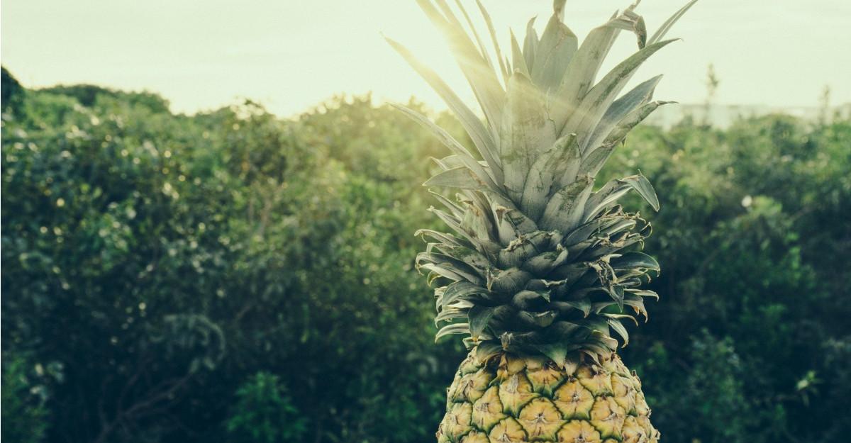 Ananasul: Beneficii si proprietati