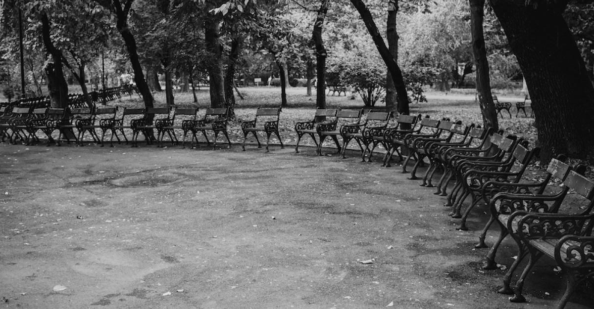 Cișmigiu Mon Amour:Declarație de dragoste pentru cel mai vechi parc din București