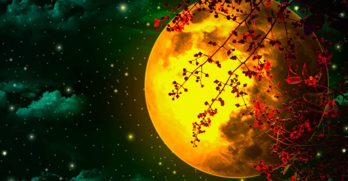 Luna Nouă de pe 28 septembrie va veni cu un val intens de energii pozitive
