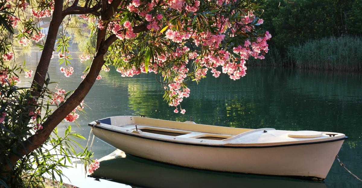 Peisaje și citate de primăvară emoționante