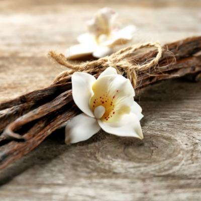 Vanilia, condimentul pe care trebuie să îl ai în bucătărie