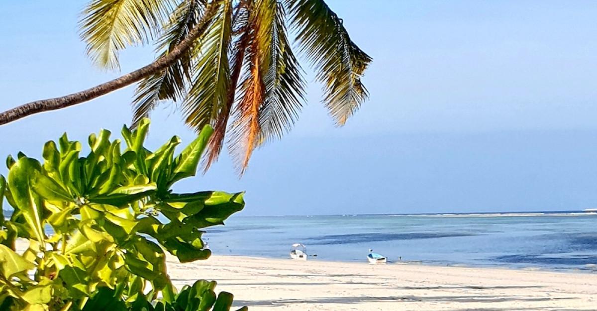 Asante sana, Zanzibar!