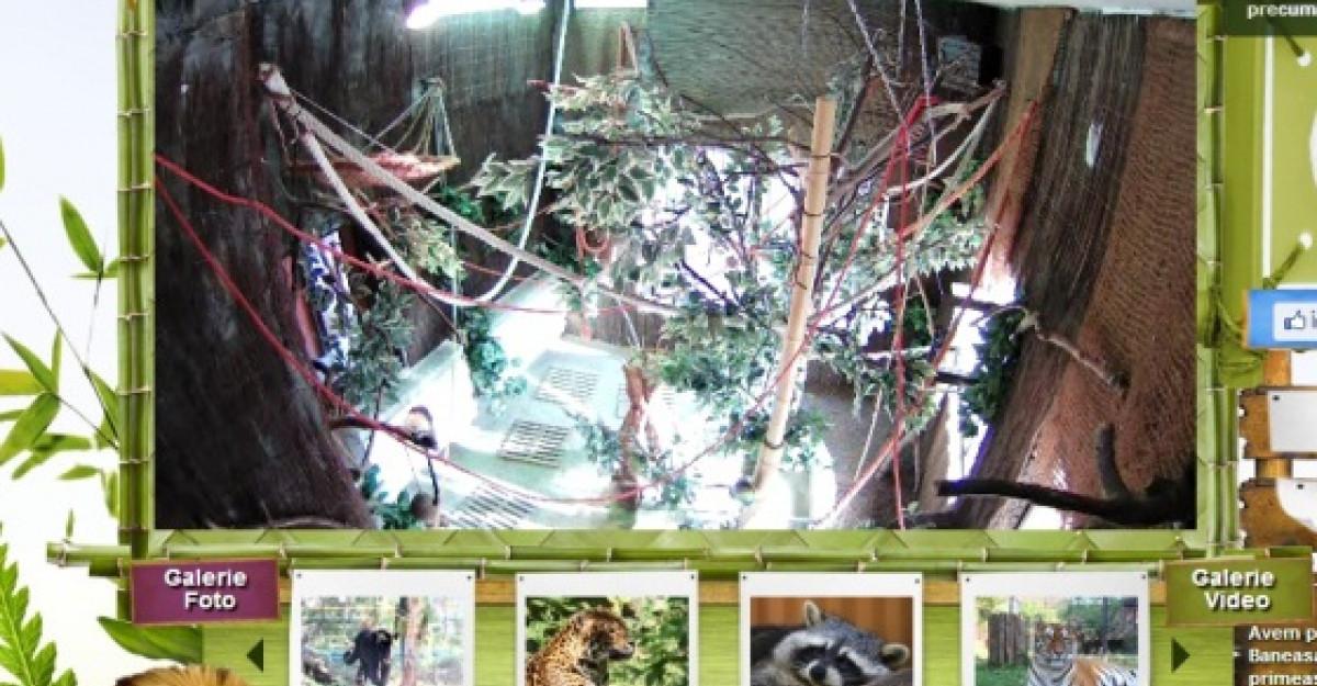Digital Zoo, singura gradina zoologica virtuala din Romania, are o noua infatisare