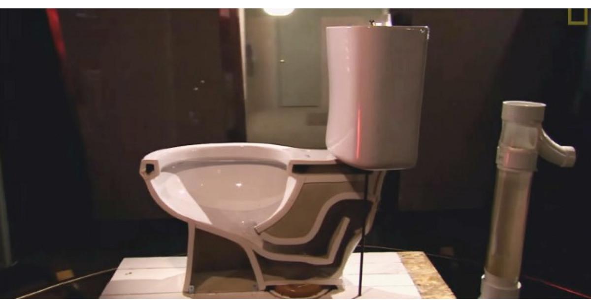 Dupa ce vei vedea asta, nu vei mai lasa niciodata capacul de la toaleta ridicat