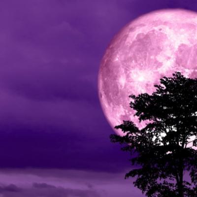 Luna Plină de pe 19 februarie. 3 Zodii vor avea parte de surprize minunate
