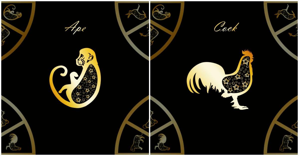 Horoscopul chinezesc pentru Maimuta si Cocos in 2020